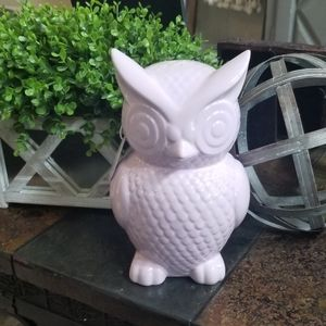 Owl decor and coin bank